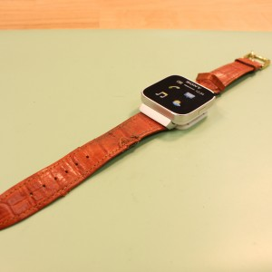 sony_broken_watchband