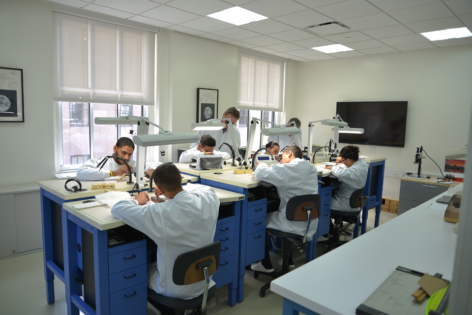 Patek Philippe watch training program
