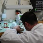 Vacancy for Watchmaker (Berkshire,UK)